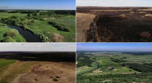 Biebrzański Park Narodowy. Zdjęcia przed i po pożarze