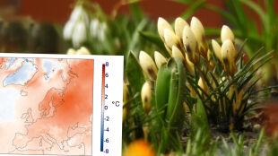 Copernicus: tegoroczna zima w Europie była najcieplejsza w historii pomiarów