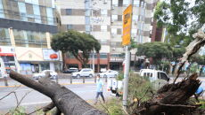 Zniszczenia w Korei Południowej po przejściu tajfunu Maysak (PAP/EPA/YONHAP)