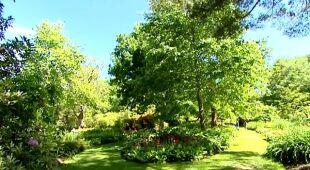Naturalistyczne ogrody angielskie (Odc. 338)